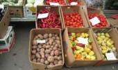 Овощи в Украине